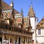 Burgundy roof tiles
